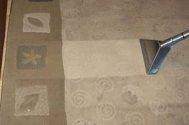carpet cleaning Glendale